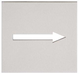 Pictogram SQUARE LSQP100G Mat RVS