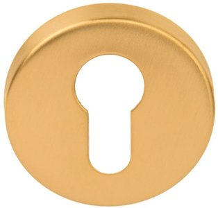 Cilinderplaatje BASIC LBY50D 10 mm PVD Mat Goud