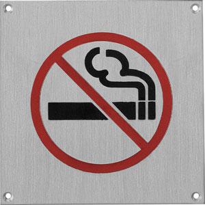 Pictogram groot rookverbod rvs